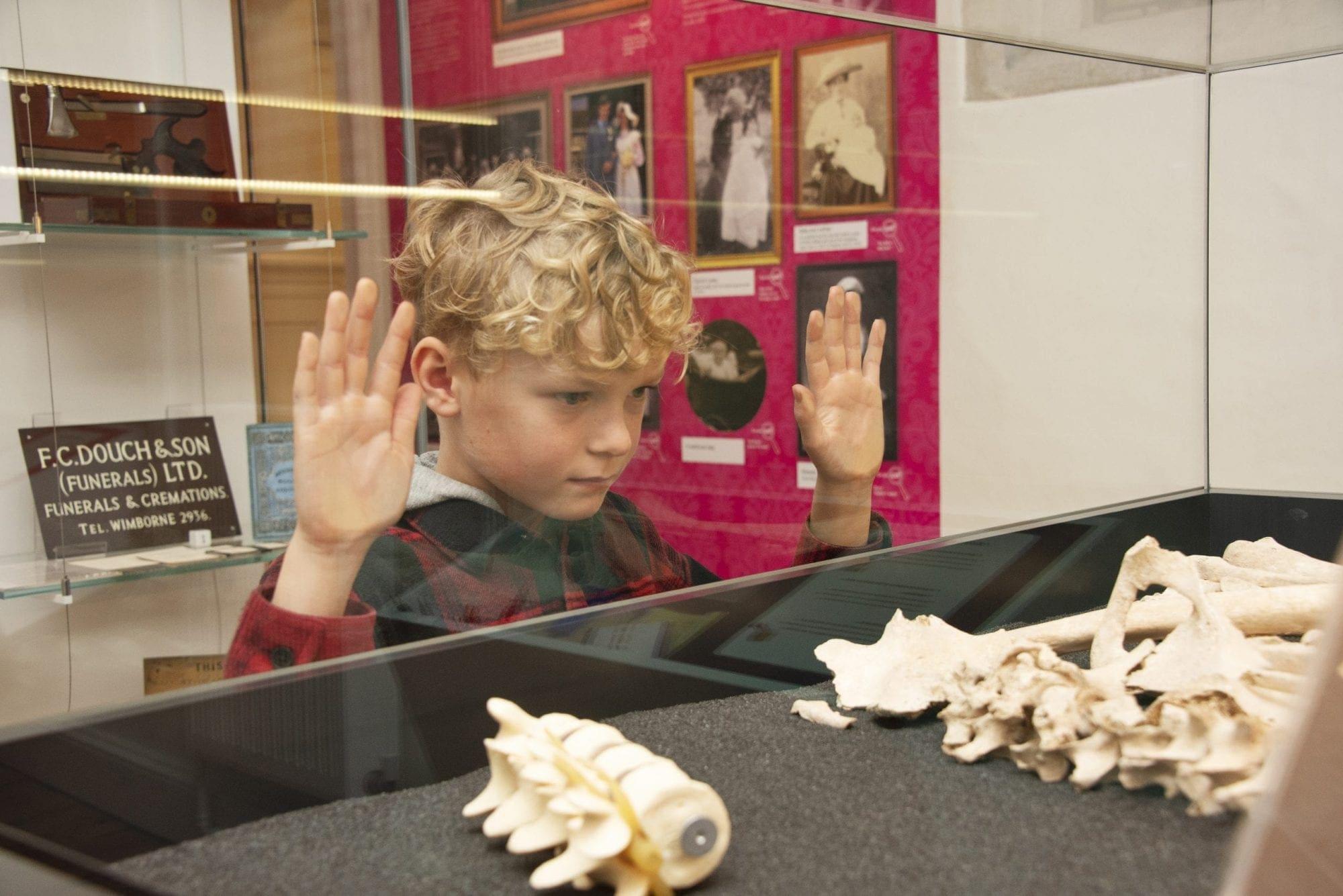 boy looking at iron age skeleton
